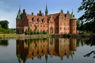 Castle Background for Android 480x800