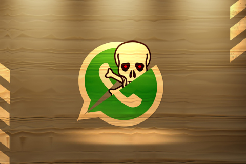 WhatsApp Messenger para Samsung S5367 Galaxy Y TV