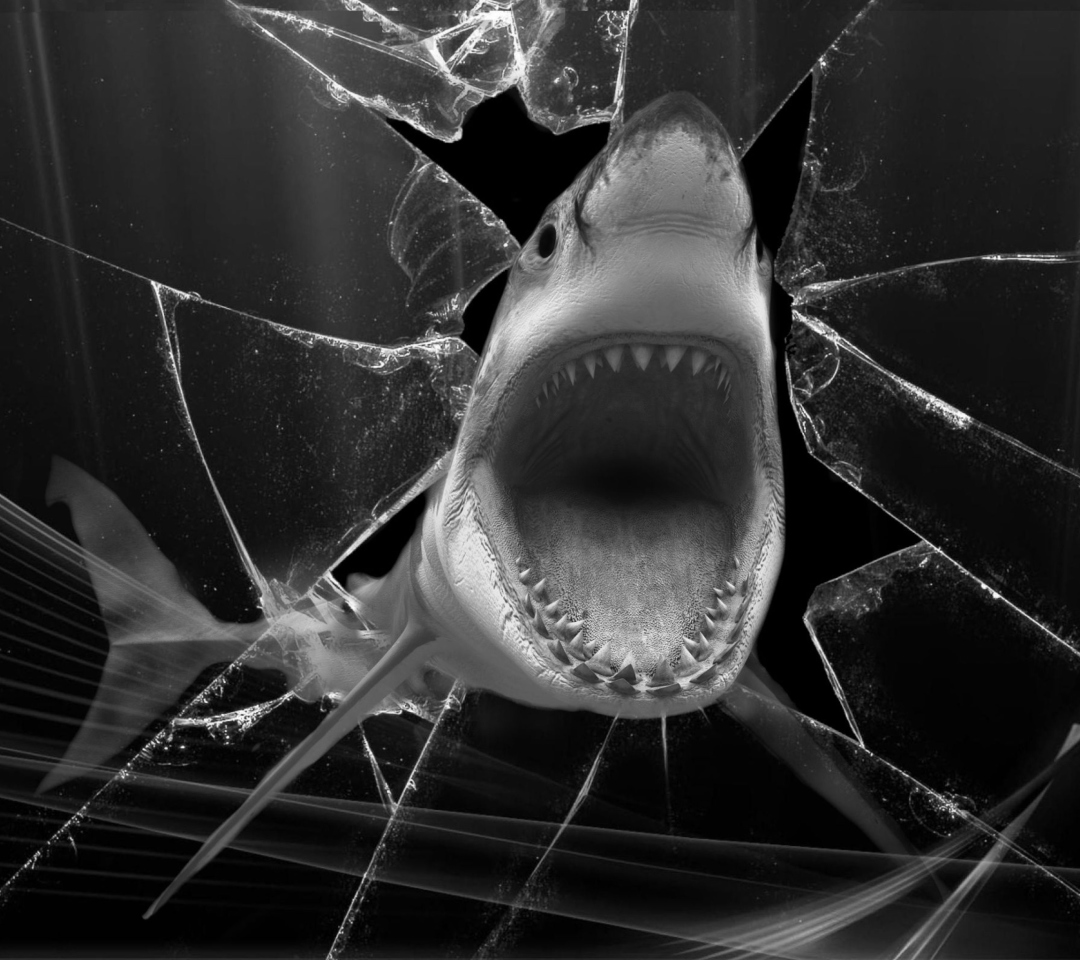 Shark para Motorola RAZR XT910
