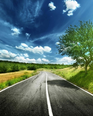 Romantic Road Wallpaper for Nokia C5-06