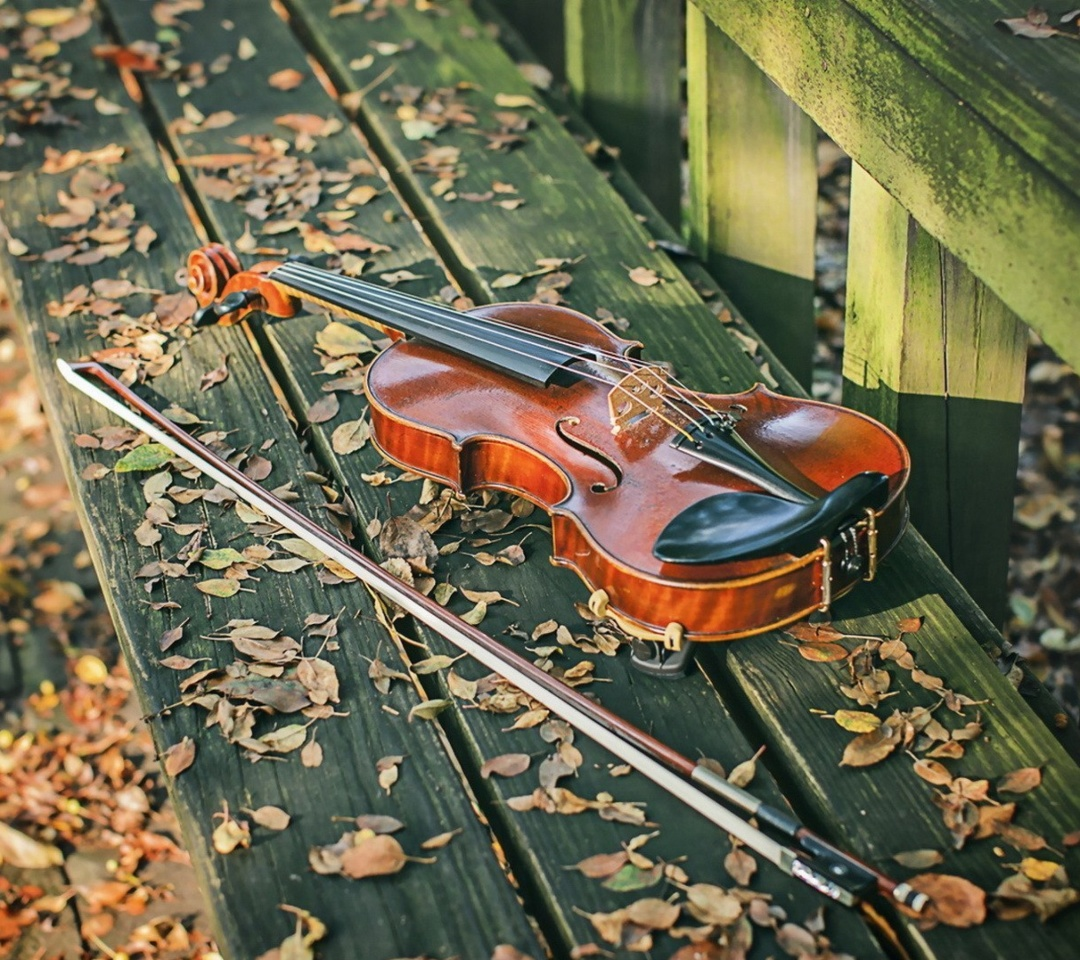 Screenshot №1 pro téma Violin on bench 1080x960