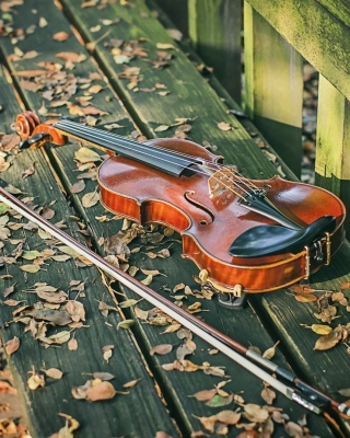 Violin on bench Wallpaper for Nokia Asha 306