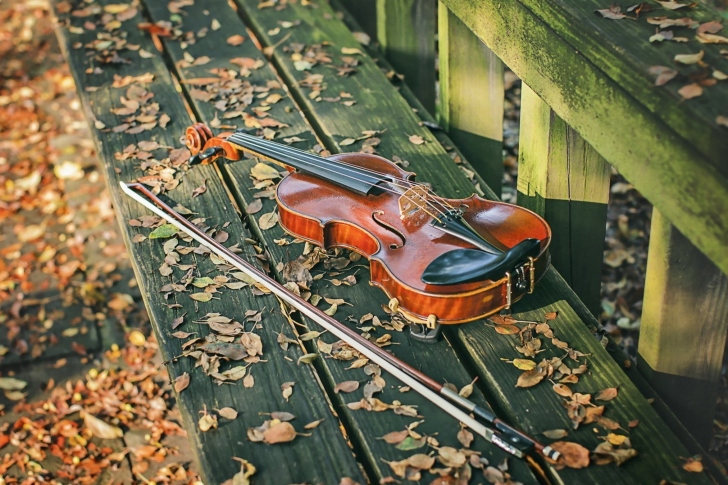 Violin on bench wallpaper