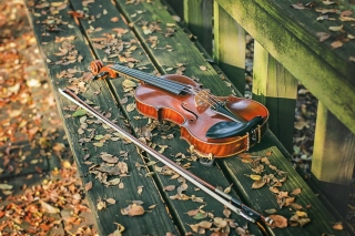 Violin on bench Background for Android, iPhone and iPad
