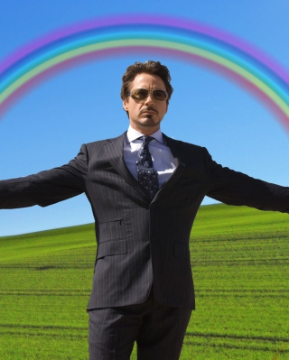 Free Robert Downey Jr Picture for Nokia Asha 310