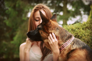 Girl And German Shepherd Background for Android, iPhone and iPad