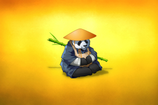 Funny Panda Illustration Background for Android 2560x1600