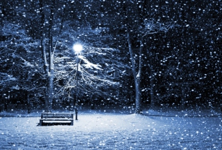 Bench In Snowy Park sfondi gratuiti per cellulari Android, iPhone, iPad e desktop