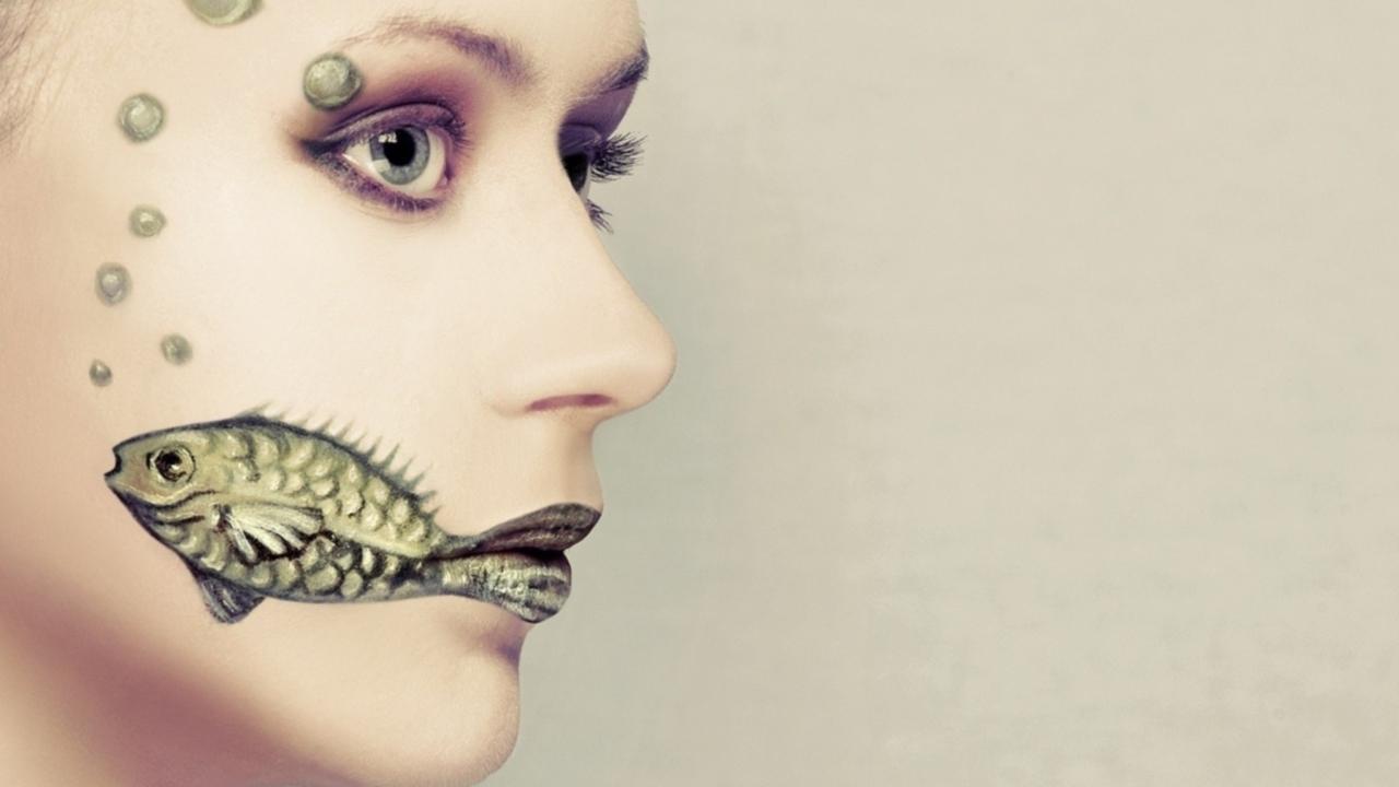 Fish Face Art