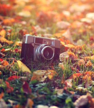 Old Camera On Green Grass And Autumn Leaves - Obrázkek zdarma pro iPhone 6