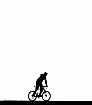 Bicycle Silhouette Wallpaper for Nokia Asha 311