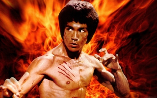Bruce Lee sfondi gratuiti per cellulari Android, iPhone, iPad e desktop