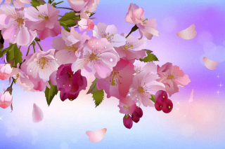 Painting apple tree in bloom Background for Android, iPhone and iPad