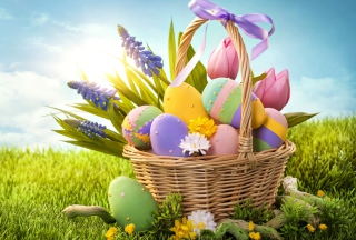 Free Basket With Easter Eggs Picture for Samsung Galaxy S5