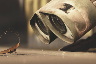 Wall E Wallpaper for 800x600