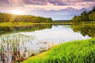 Summer Landscape Background Picture for Samsung Galaxy Ace 3