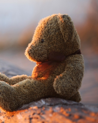 Lonely Teddy Bear Background for iPhone 6 Plus