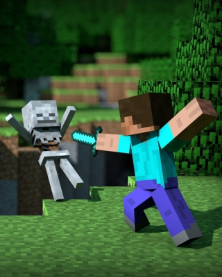 Minecraft Steve Picture for iPhone 6 Plus