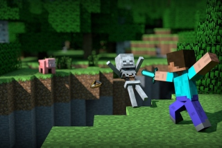 Minecraft Steve sfondi gratuiti per cellulari Android, iPhone, iPad e desktop