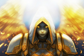 Priest, World of Warcraft Background for Android, iPhone and iPad