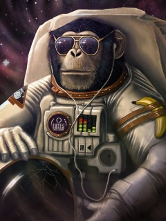 Monkeys and apes in space wallpaper 240x320