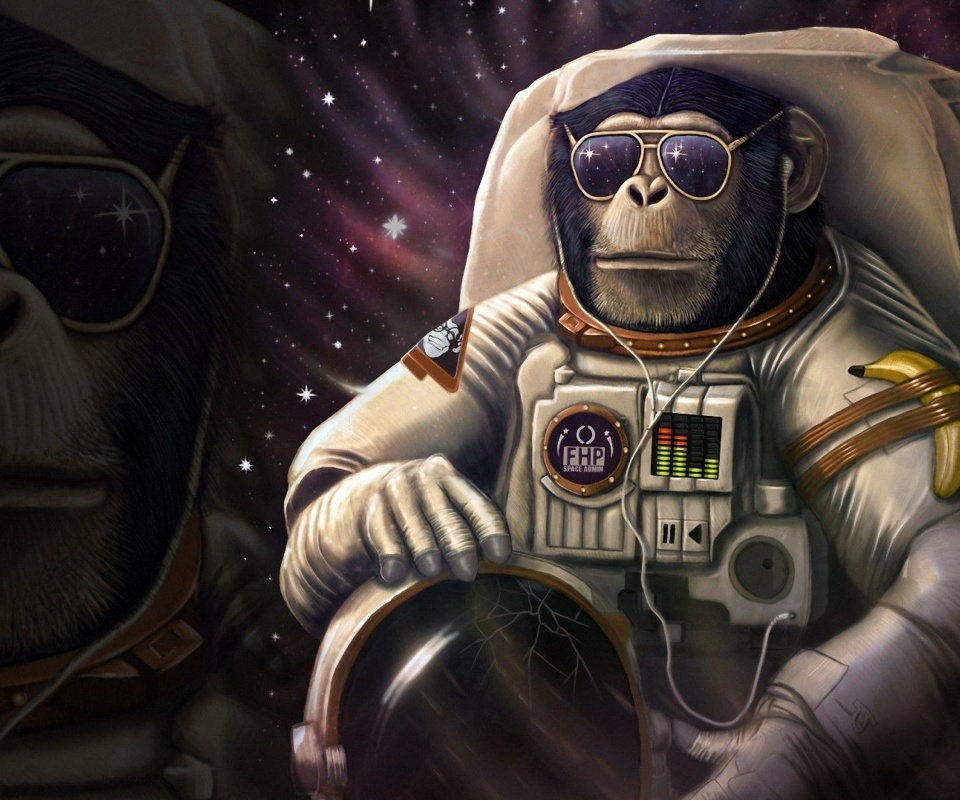 Monkeys and apes in space wallpaper 960x800