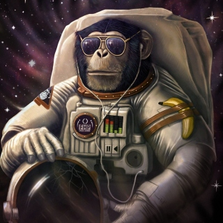 Monkeys and apes in space Wallpaper for iPad 3