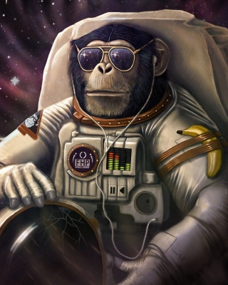 Monkeys and apes in space Wallpaper for Nokia Asha 311