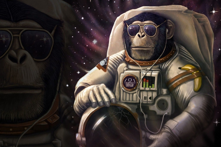 Monkeys and apes in space wallpaper