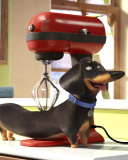 Screenshot №1 pro téma The Secret Life of Pets 128x160