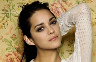 Marion Cotillard Wallpaper for Android, iPhone and iPad
