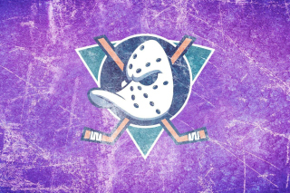 Anaheim Ducks Background for 480x400