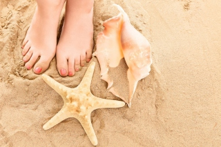 Seashell, Seastar And Sandy Feet Background for Android, iPhone and iPad