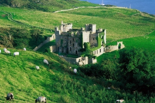 Medieval Castle On Green Hill Background for Desktop Netbook 1024x600