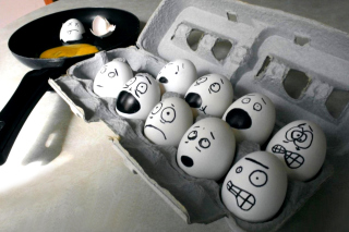Funny Eggs Background for 220x176