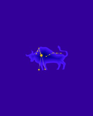 Taurus Wallpaper for Nokia C5-06