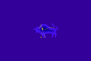 Taurus Background for 220x176