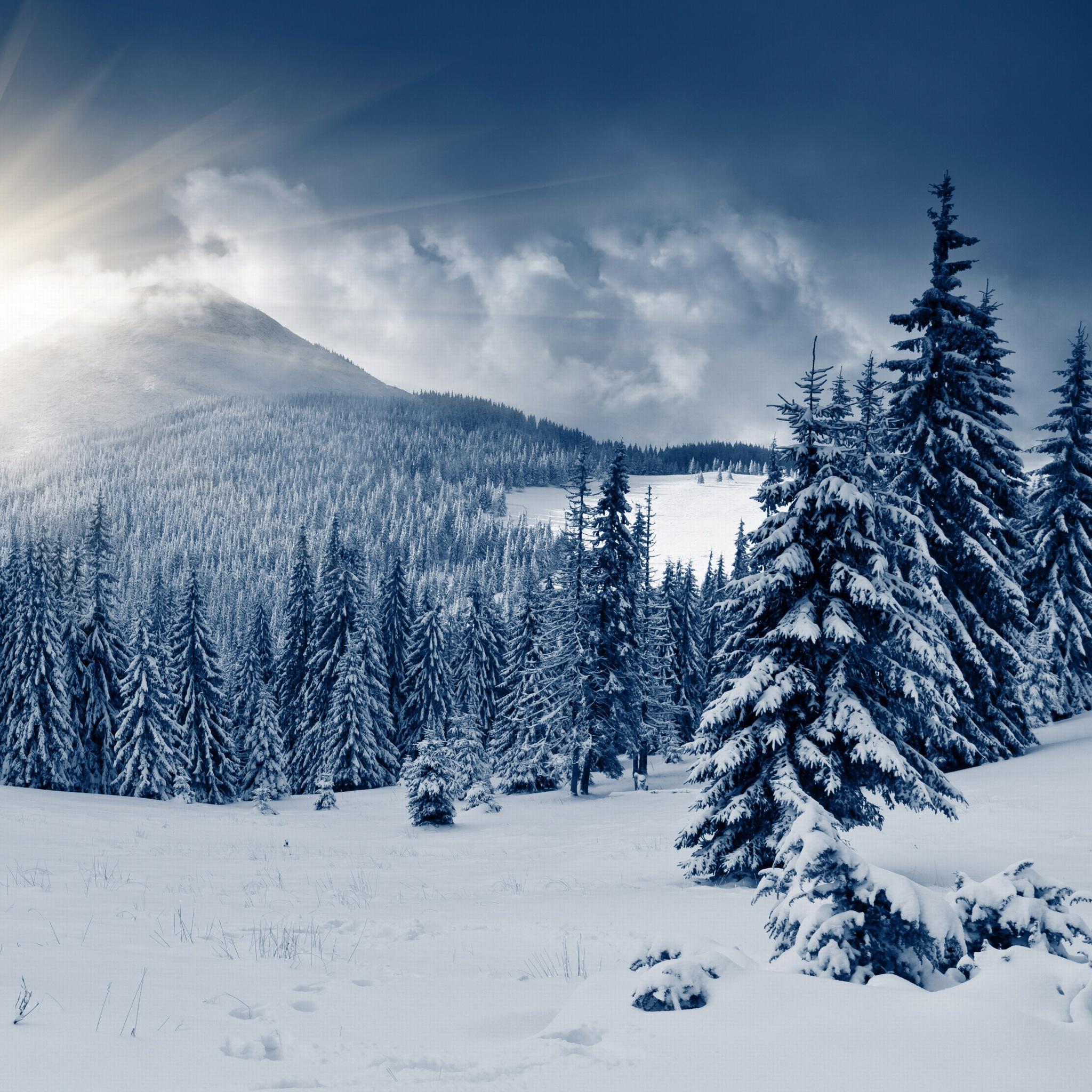 этом обзоре картинки обоев зима для айфона прически лак повлияли