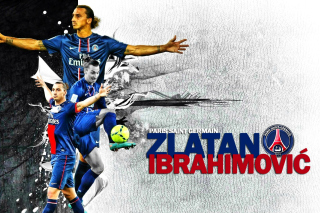 Free Zlatan Ibrahimovic Picture for Android, iPhone and iPad