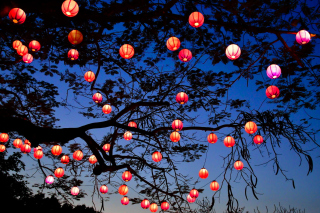 Chinese New Year Lanterns Picture for Android, iPhone and iPad