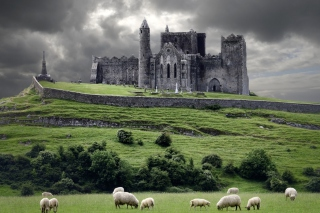 Ireland Landscape With Sheep And Castle Wallpaper for Android, iPhone and iPad