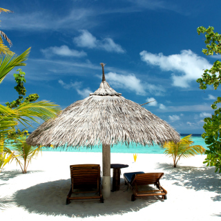 Luxury Beach on Bonaire sfondi gratuiti per iPad 3