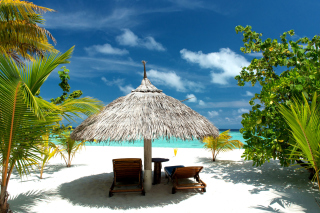 Luxury Beach on Bonaire Wallpaper for Android, iPhone and iPad