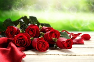 Red Roses for Valentines Day Background for Android, iPhone and iPad