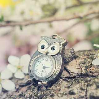 Vintage Owl Watch Picture for iPad 2