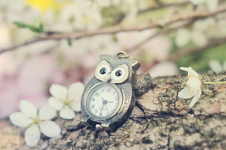 Vintage Owl Watch Background for 960x854