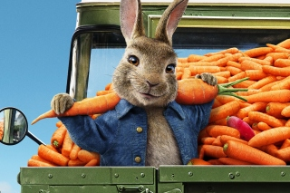 Peter Rabbit 2 The Runaway 2020 Background for Samsung Galaxy Tab 3 8.0