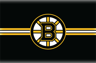 Boston Bruins Hockey - Obrázkek zdarma pro Widescreen Desktop PC 1920x1080 Full HD