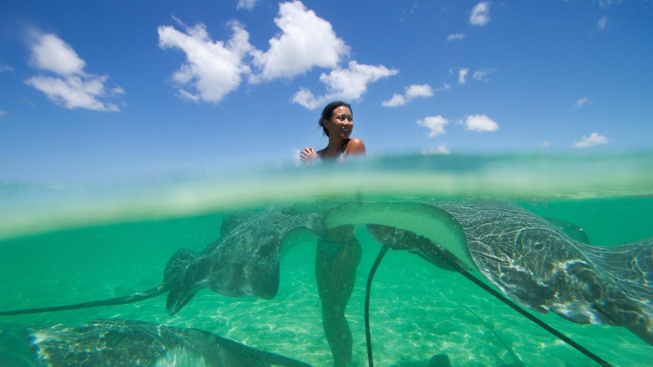 Girl And Rays Fish