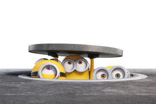 Free Minions Band Picture for Android, iPhone and iPad